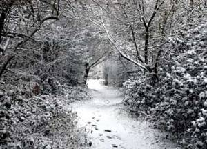 snowscape_copyright-free-photos-org-uk